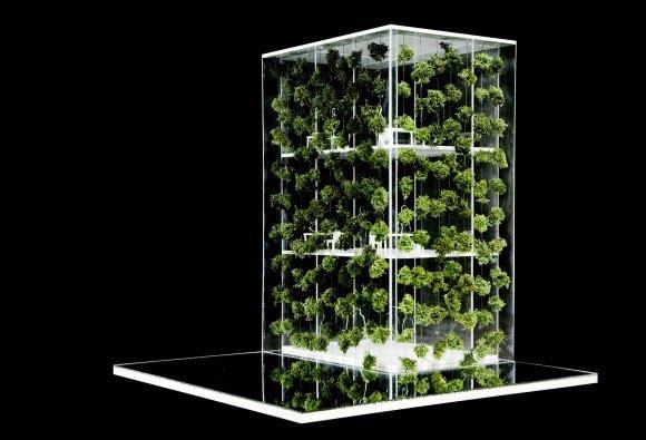 Vertiacal garden Modell